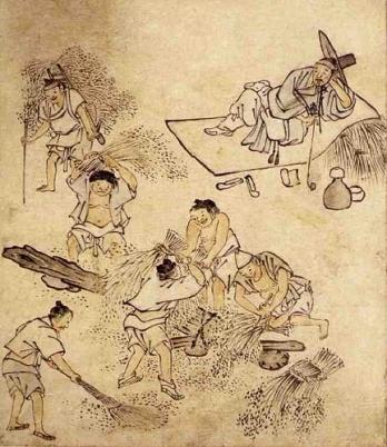 Danwon (432x500)