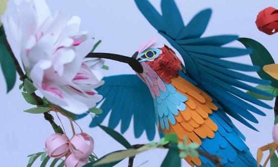 oiseau (550x330)