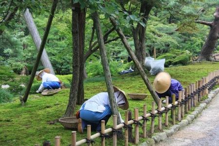jardin kenrokuen Kanazawa