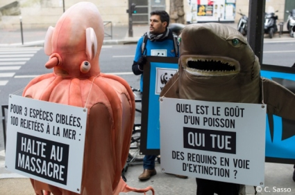 BLOOM-Mutinerie-des-Abysses-Poulpe-et-Requin