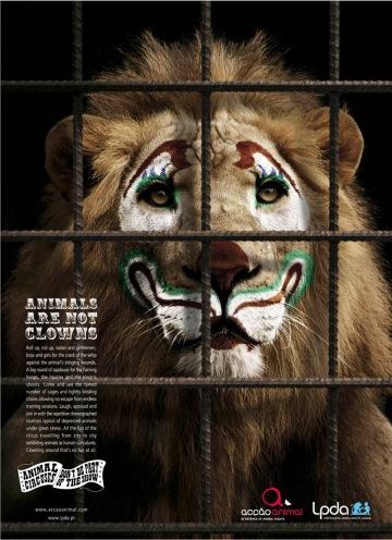 les animaux ne sont pas des clowns 2