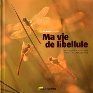 Ma-vie-de-libellule