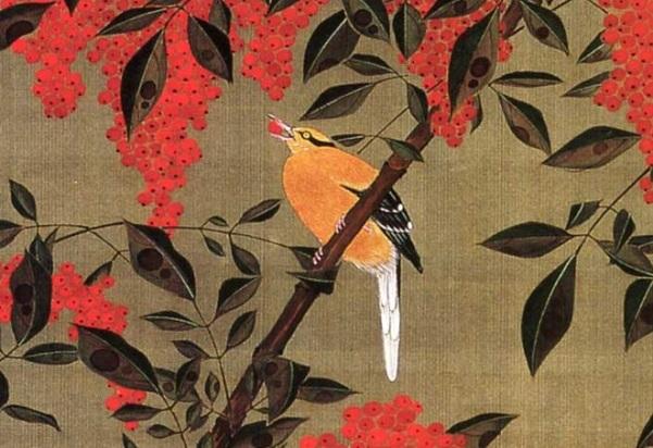 jakuchu-oiseau-détail